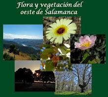 Colección Flora y vegetación del oeste de  Salamanca