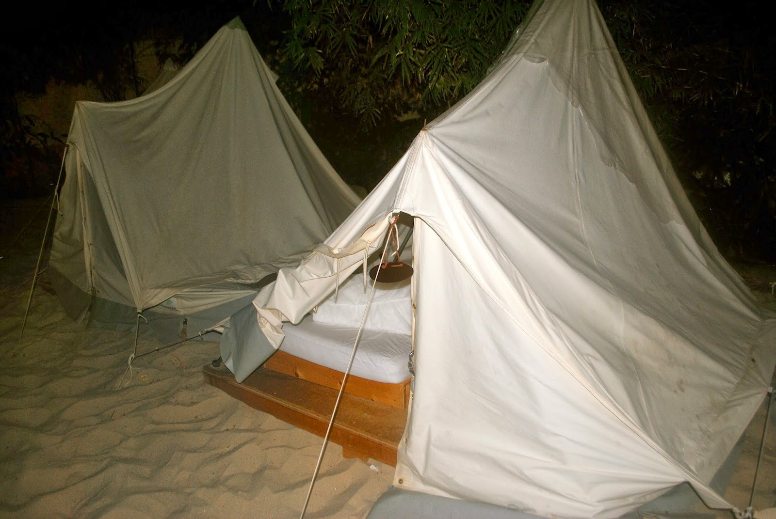 Our tent in the rainforest c&. & Postcards from Erinn: New Yearu0027s Eve at Tropical Islands Resort