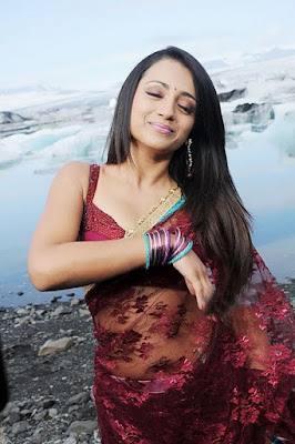 Trisha_Latest_Hot_Pics_in_Saree