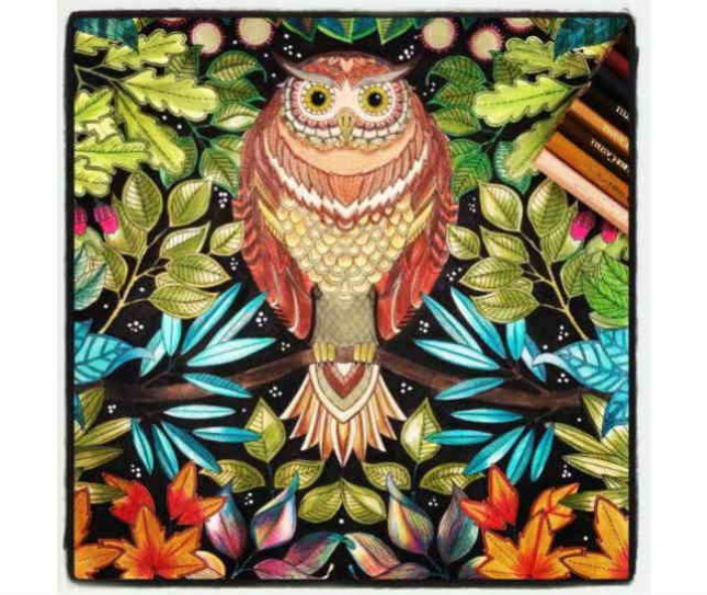 Adult Coloring Contest