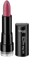 Preview: Die neue dm-Marke trend IT UP - Ultra Matte Lipstick 040 - www.annitschkasblog.de