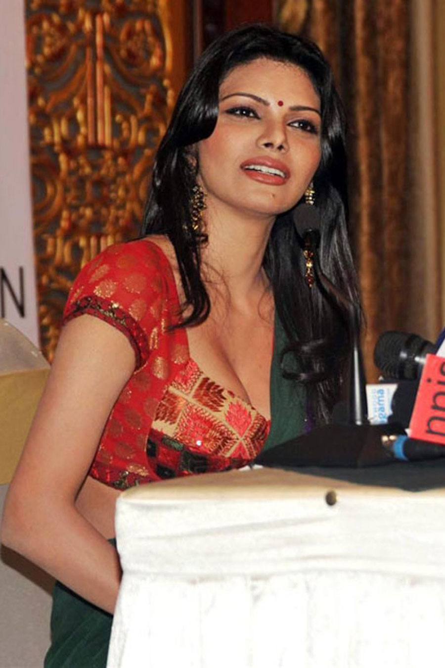 sherlyn chopra in saree photo gallery