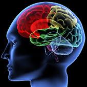 Practice You Brain