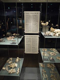 Menschen-, Tierknochen, Keramik und Geräte aus den Grubenringen