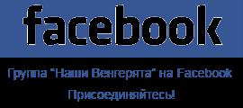Мы на Фейсбуке