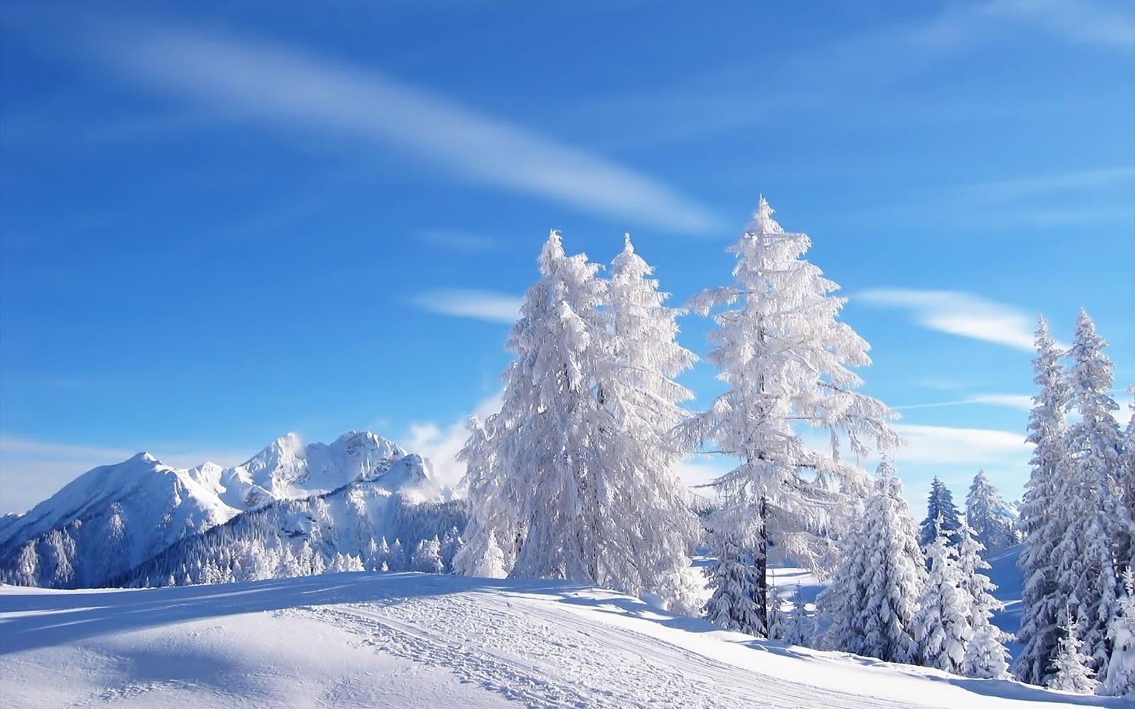 http://3.bp.blogspot.com/-fG2SW2hUQmg/TrdfzAePYlI/AAAAAAAAAao/Lv6qhzpUyvA/s1600/nature-Winter-Wallpapers-22.jpg