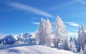 #2 Winter Wallpaper