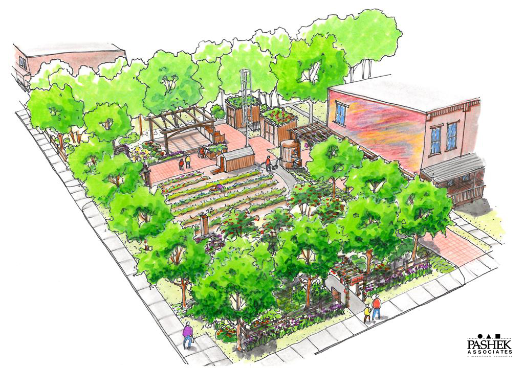 Pashek associates blog permaculture community for Community garden designs