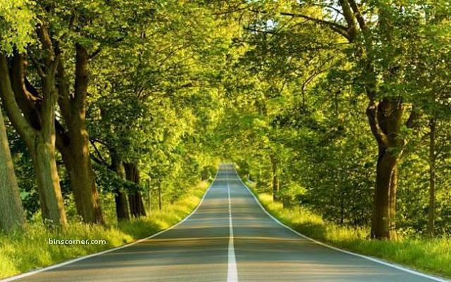 beautiful roads in the world