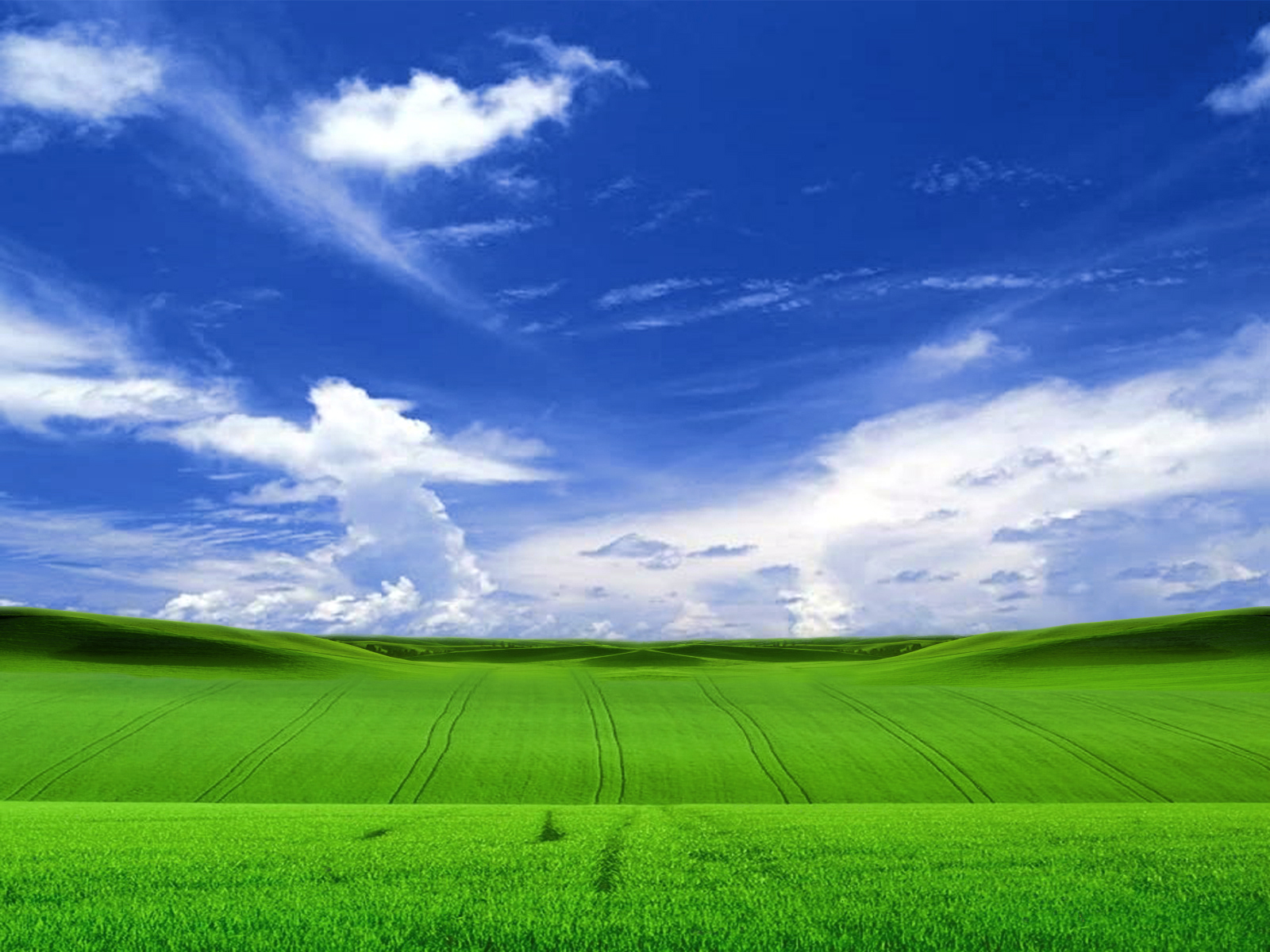 free 3d windows xp wallpapersvistanatureanimalsfun