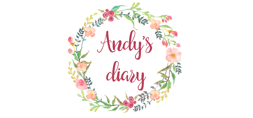 Andy's diary - blog o všem, co mě baví a naplňuje