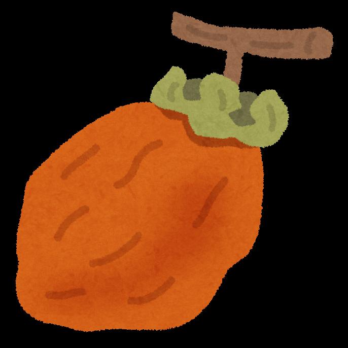 干し柿のイラスト | 無料 ...