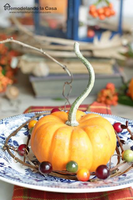 little pumpkin on Blue Tonkin Royal Staffordshire plate
