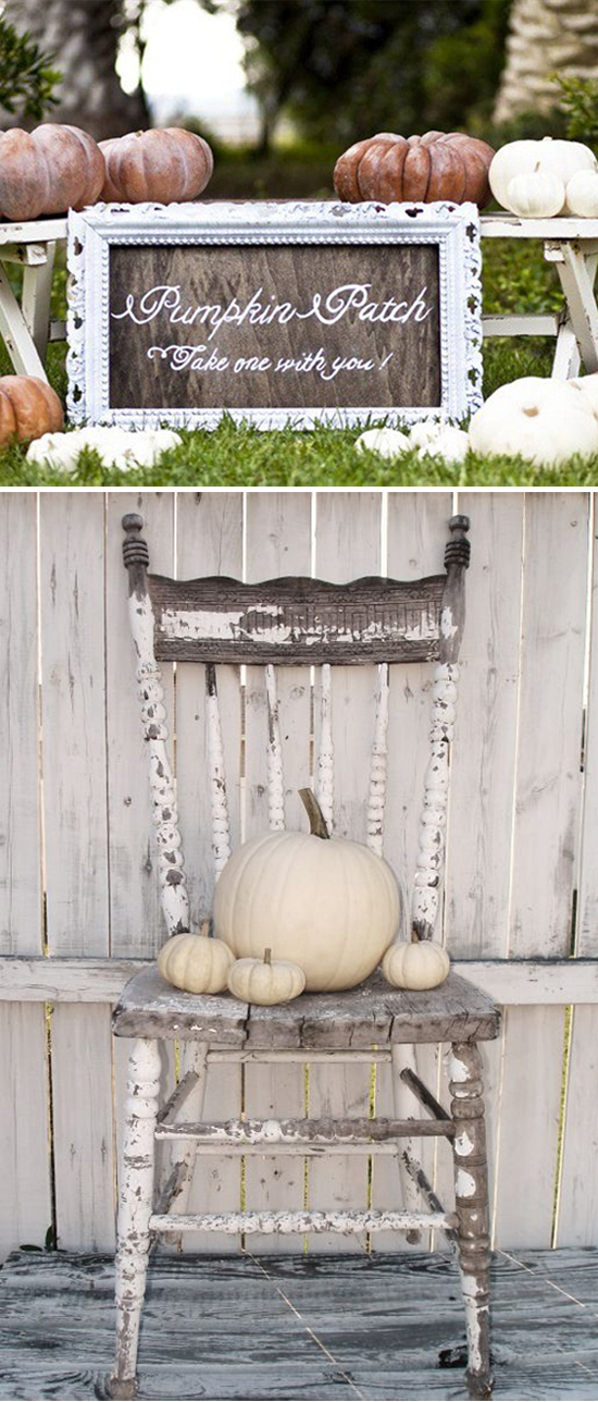 White Pumpkin Fall Wedding Inspiration Board