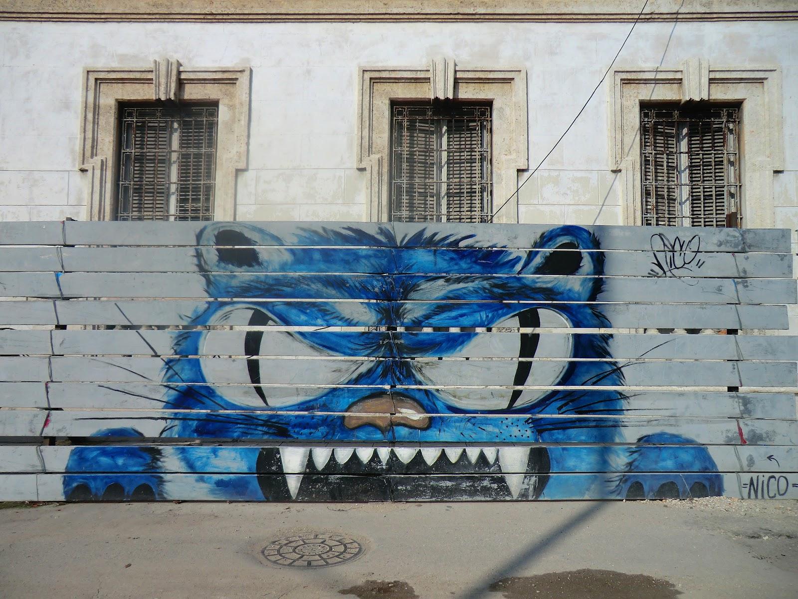 Blue Buffalo Cat Food Youtube Joejoe Delylah
