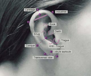 diagrama piercing orelha ear tragus
