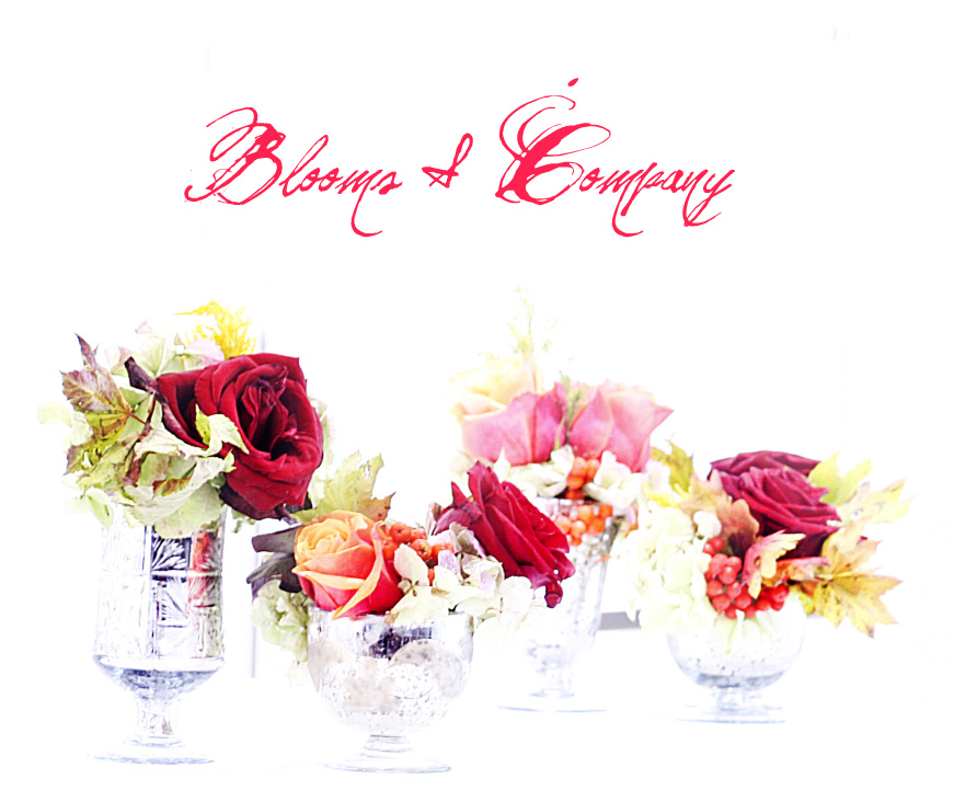 Blooms &amp; Company