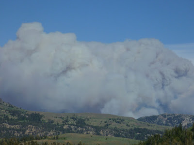 Washington Fire near Markleeville, Alpine County, California