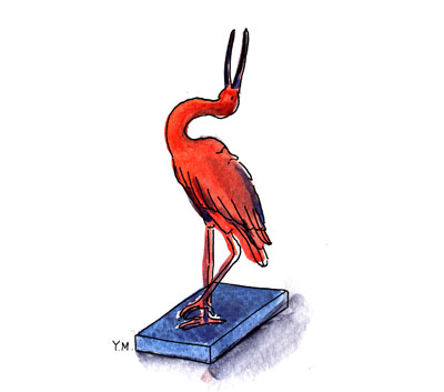 Ibis by Yukié Matsushita