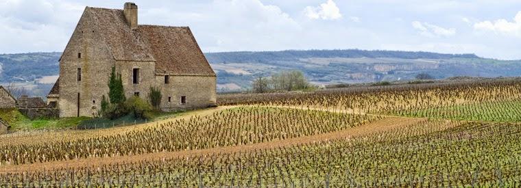 Tops 10 des activités à Bordeaux