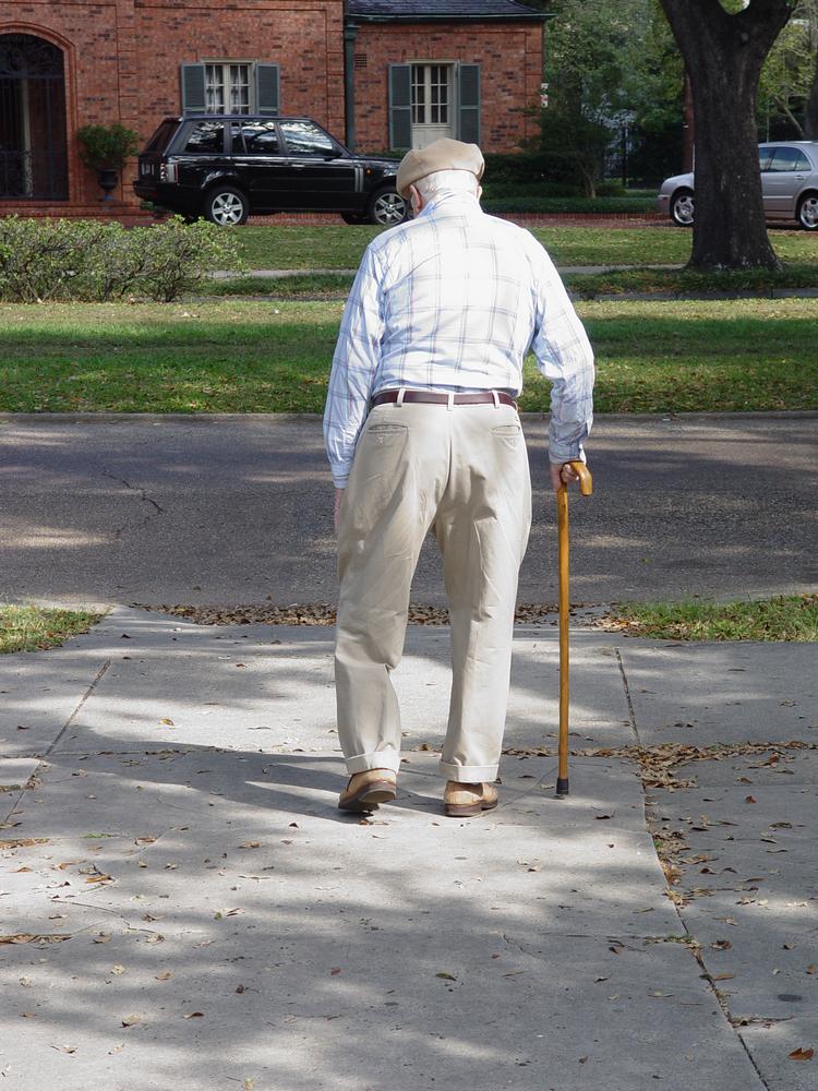 Mens Dog Walking Wellington Boots