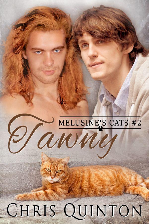 Tawny - Melusine's Cats #2