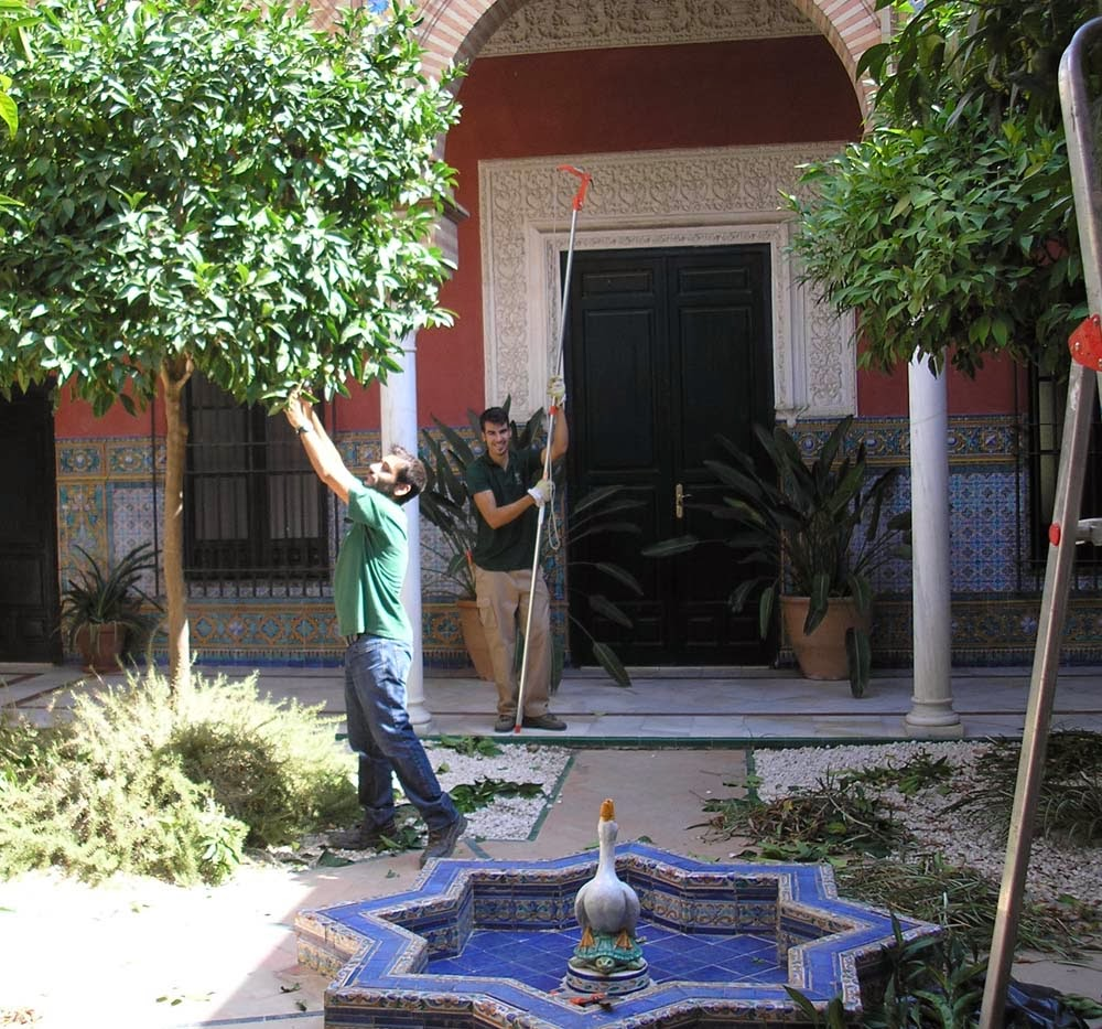 Escuela de jardiner a joaqu n romero murube diciembre 2013 for Escuela de jardineria