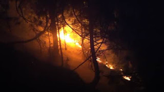 Bonfire at Postribë Village, some hectares of forests burned