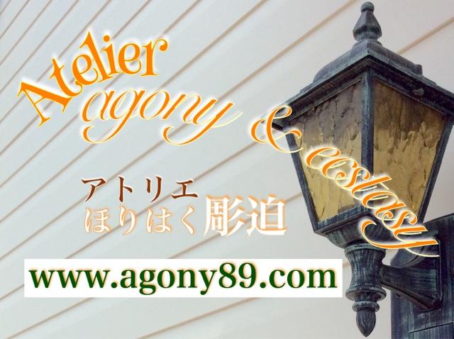 AGONY & ECSTASY:刺青師・初代 彫迫 日記【 ほりはく日記 】