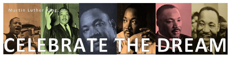 Info Lit A Librarian S Blog Martin Luther King Day What S In