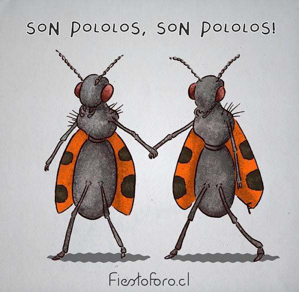 Dos insectos, comúnmente llamados pololos, van caminando de la mano como en distracción, y no le importa nada por que.... son pololos!