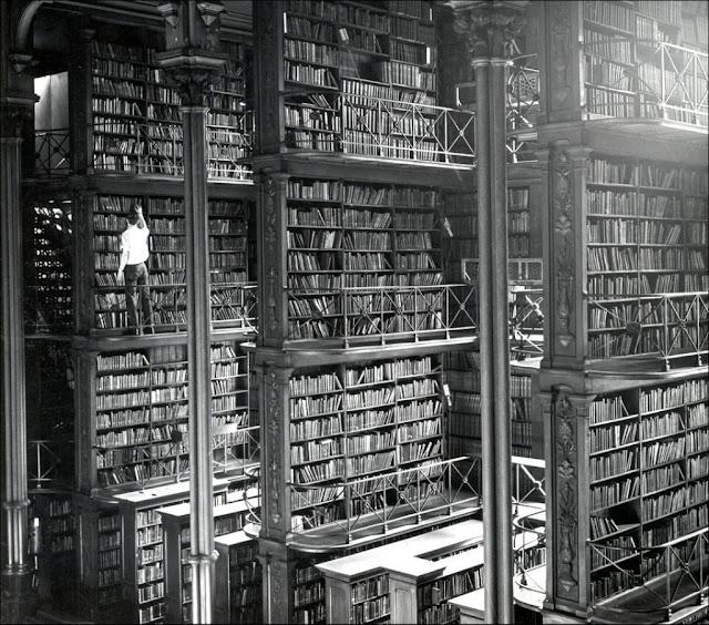 Мужчина лазате постремянкам возле гиганских книжных полок. Ужас!