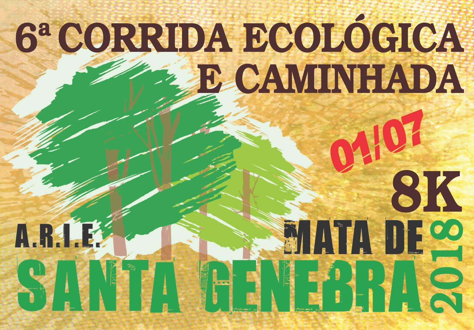 Corrida Ecológica Mata Santa Genebra