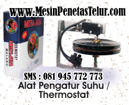 Thermostat Penetas Telur Bebek : Thermostat