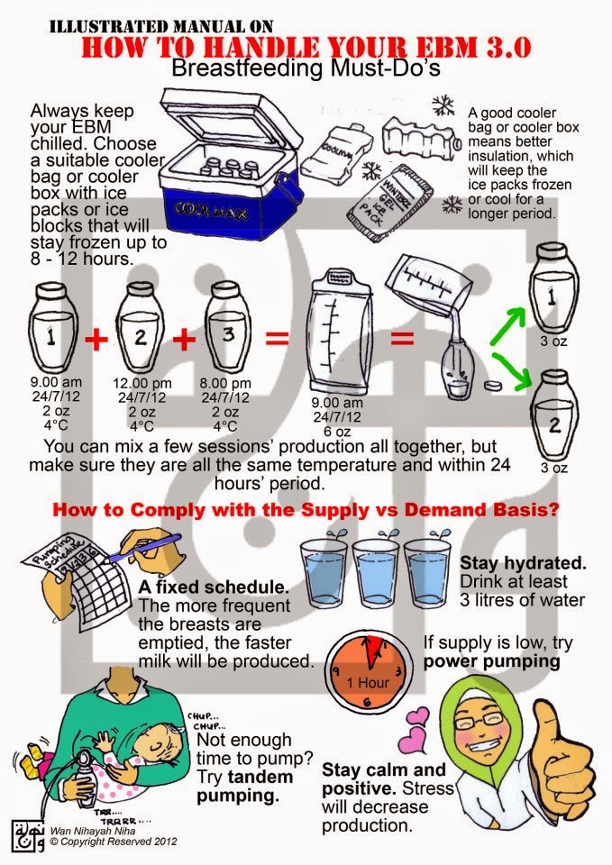 Cara Menguruskan EBM