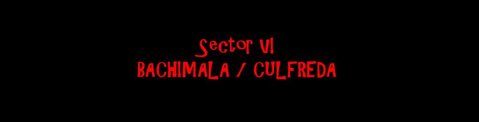 SECTOR VI - BACHIMALA / CULFREDA