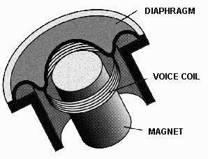 dynamic mic, dynamic microphone, dynamic voice coil, microphone voice coil, mic voice coil, dynamic microphone diaphragm