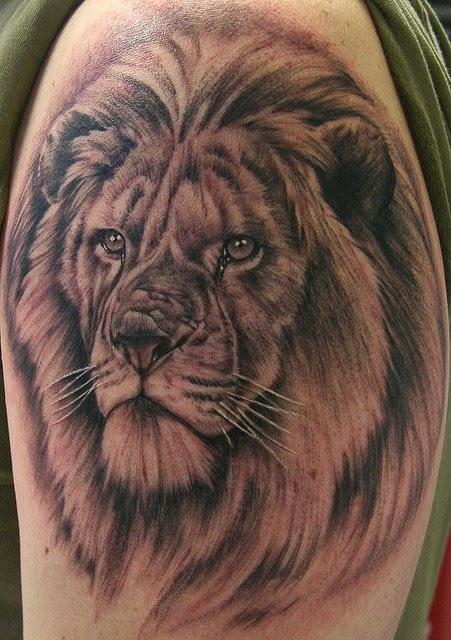 Amazing Tattoo World Realist 3d Lion Tattoo On Arm