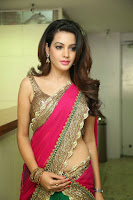 Deeksha Panth Hot Image in Pink Half-Saree
