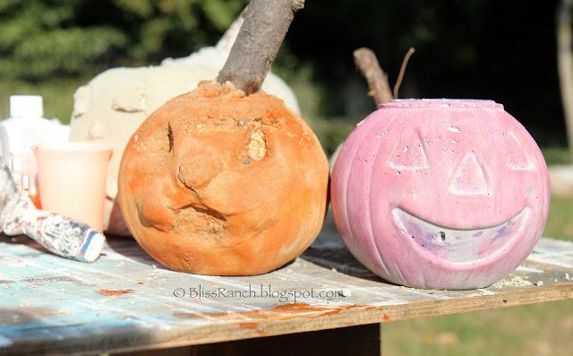 IMG_7973 Rit dye cement pumpkins