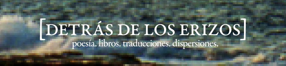 [detrás de los erizos] • blog de Santiago Acosta