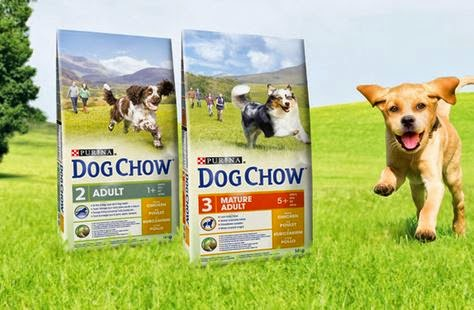 Prueba Purina Dog Chow
