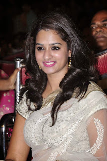 Actress Nanditha Raj Picture Gallery in Saree at Krishnamma Kalipindi Iddarini Movie Audio Launch  9