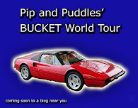 PIP AND PUDDLES BUCKET TOUR