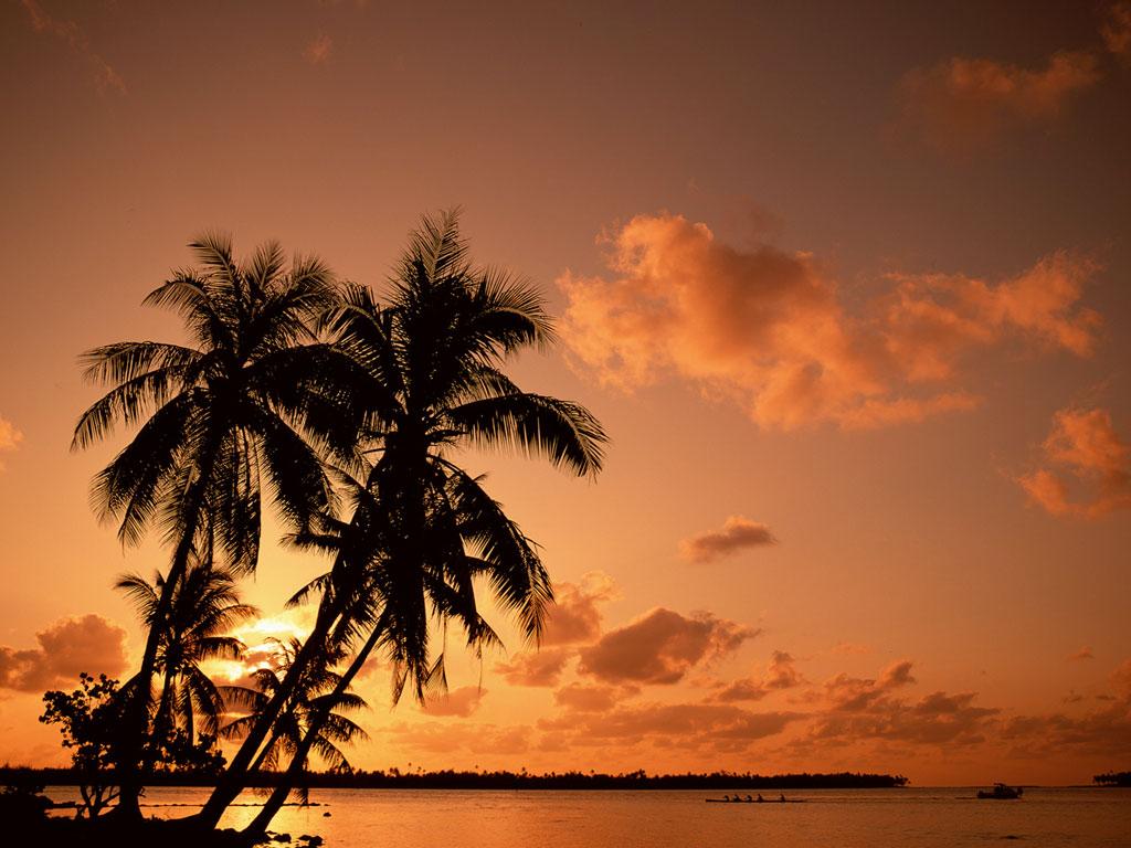 http://3.bp.blogspot.com/-fMhM9QrLBX4/St2ClBmF4jI/AAAAAAAAACU/pDfz4K7P4_o/s1600/sunset-lanscape-wallpaper.jpg