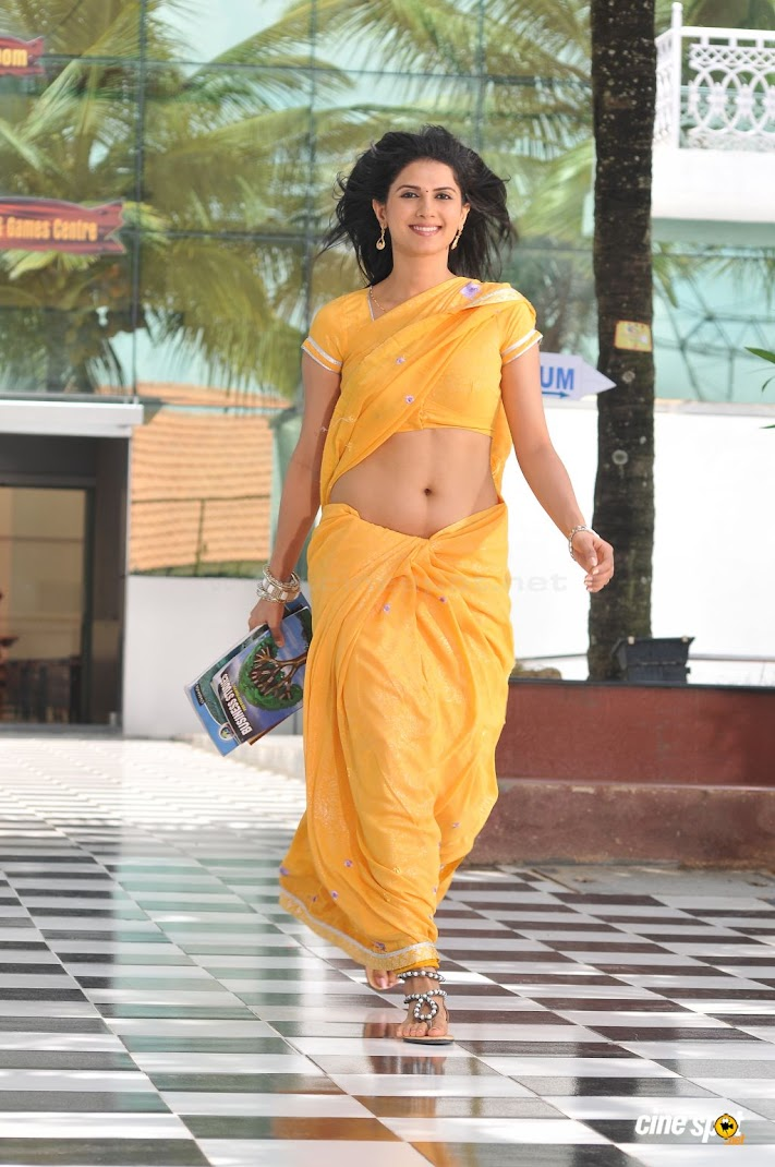  Daisy Bopanna Hot Yellow Saree Wallpapers