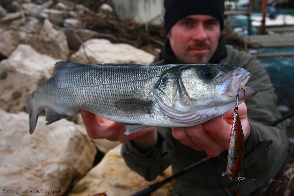 Fishing in croatia and in the neighbourhood fishing for Fishing in croatia