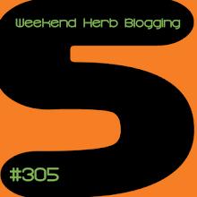 WHB 305