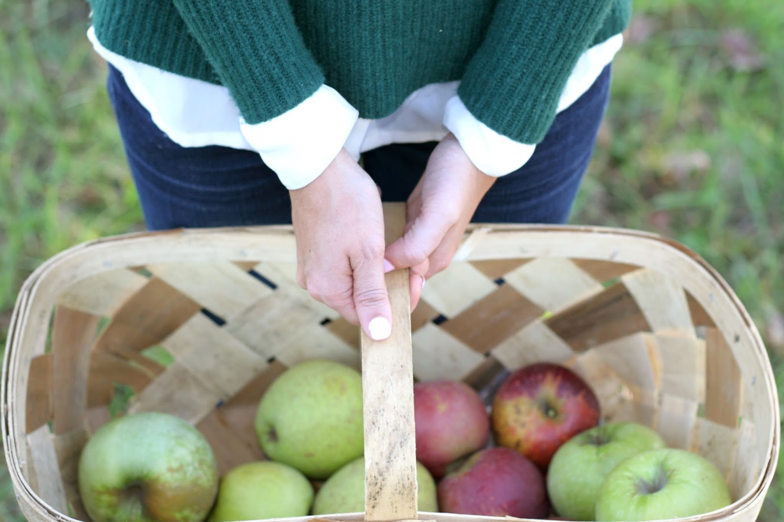 fall-apple-picking