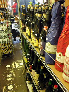 A row of beer at Stein's Market and Deli.